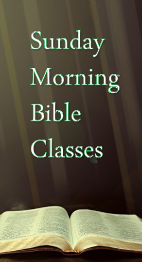 Website Sidebar Bible