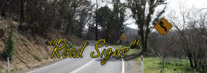 winding road sign reversed